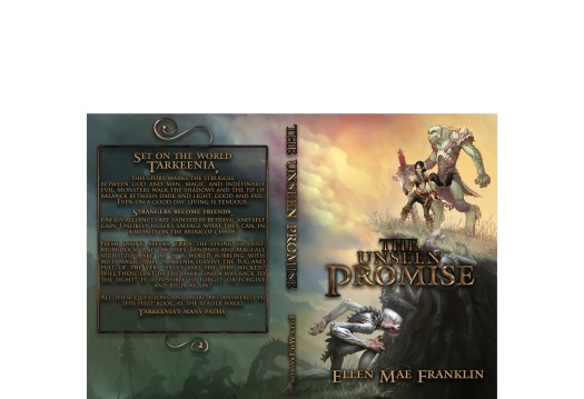 The Unseen Promise Cover