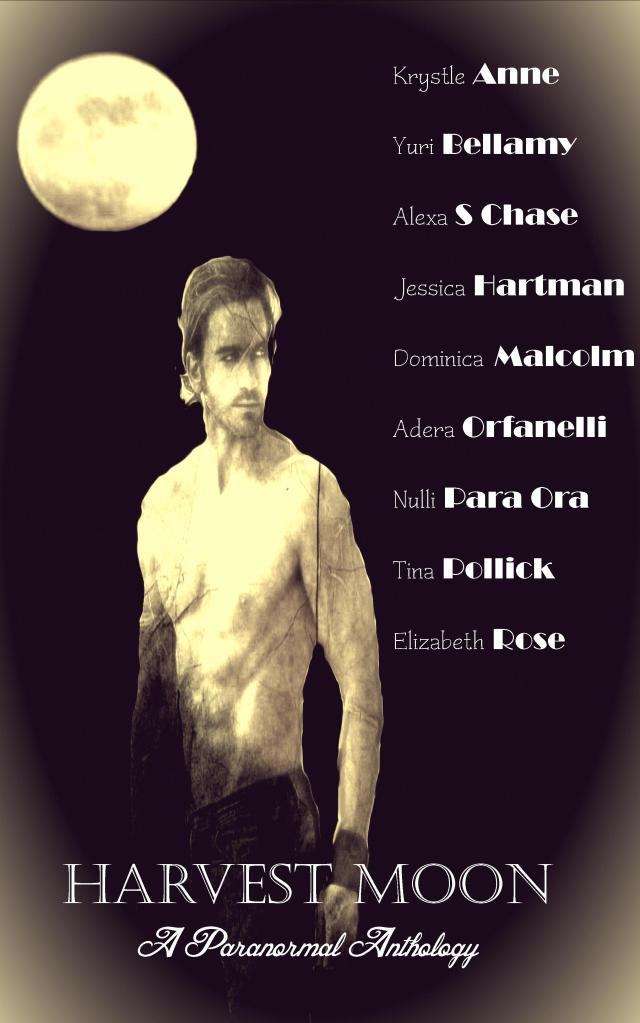 Harvest Moon Cover Kindle 2